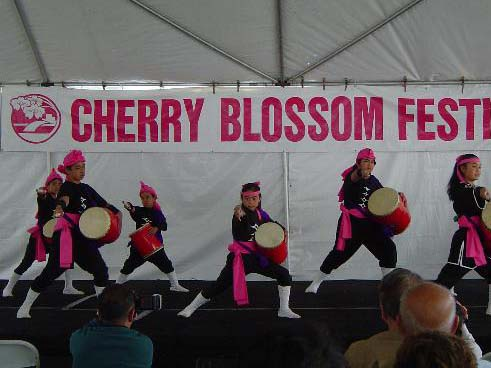 cherry blossom drummers with banner